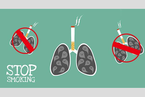 1天抽1包菸的人, 1年可造成肺基因突變150次