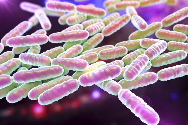 益生菌對改善幼兒腹瀉和嘔吐症狀無效